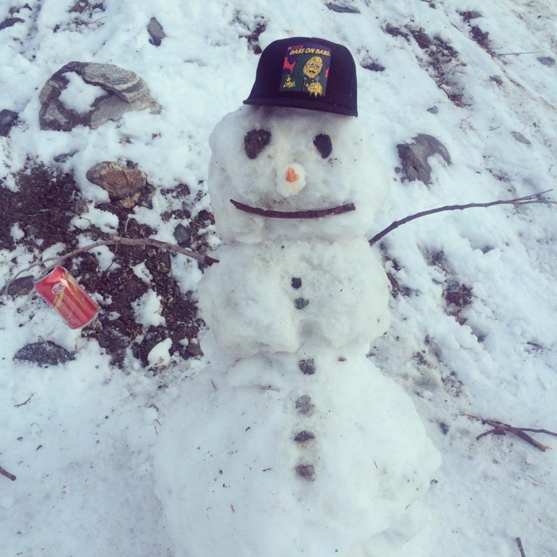 2017-01-14-19-04-01_2ill_snowman